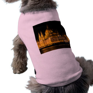 Budapest Parliament At Night Shirt