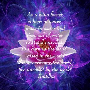 Lotus Flower Quote Home Décor Zazzlecomau