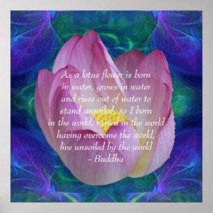 lotus rising gifts on zazzle au