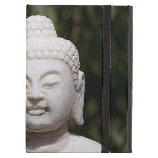 Buddha Statue iPad Air Cover