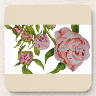 Budding peonies on Coasters