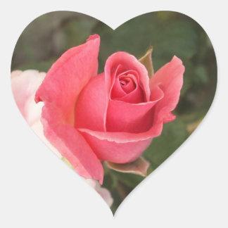 Budding Pink Rose Heart Sticker
