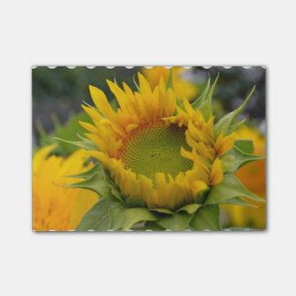 Budding Sunflower Post-it® Notes