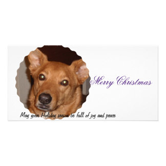 Buddy Line Merry Christmas Photo Card Template