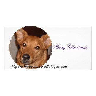 Buddy Line Merry Christmas Photo Card Template