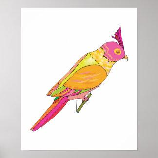 budgerigar bird poster
