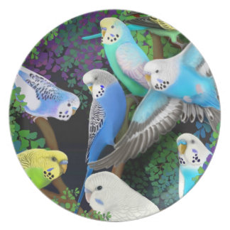 Budgerigar Parrots in Ferns Plate