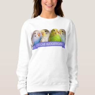 Budgerigars realistic painting sweatshirt