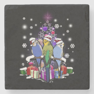 Budgerigars with Christmas Gift and Snowflakes Stone Coaster