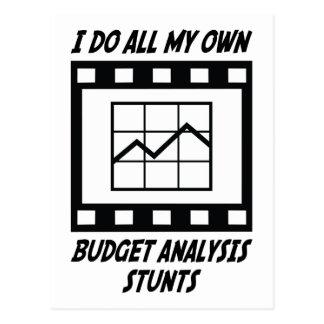 Budget Analysis Stunts Postcard