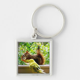 Budgie and Red Squirrel Key Ring