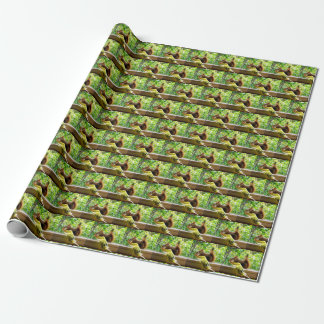 Budgie and Red Squirrel Wrapping Paper