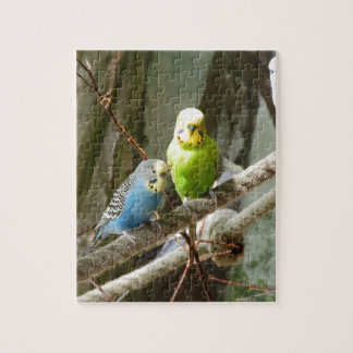 Budgie Bird Puzzle