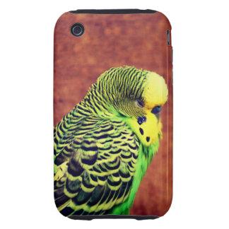 Budgie Bird Tough iPhone 3 Case
