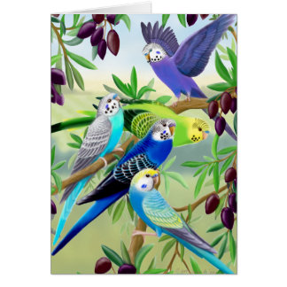 Budgie Parakeets in Olive Tree Greeting Card