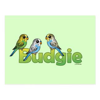 BUDGIE POSTCARD