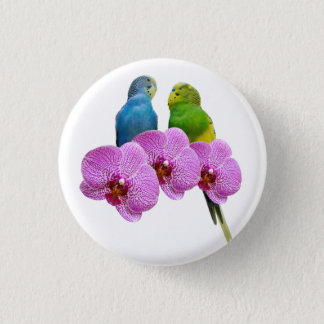 Budgie with Purple Orchid 3 Cm Round Badge