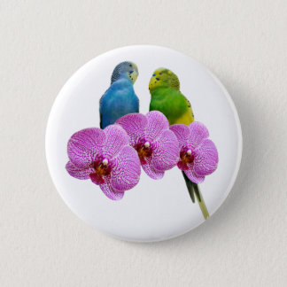 Budgie with Purple Orchid 6 Cm Round Badge