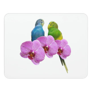 Budgie with Purple Orchid Door Sign