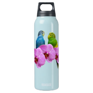 Budgie with Purple Orchid Insulated Water Bottle
