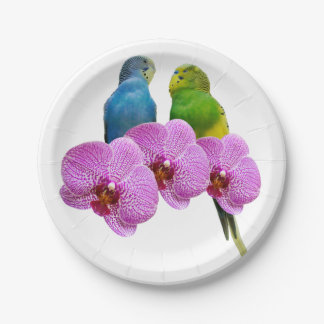Budgie with Purple Orchid Paper Plate
