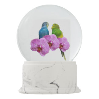 Budgie with Purple Orchid Snow Globe