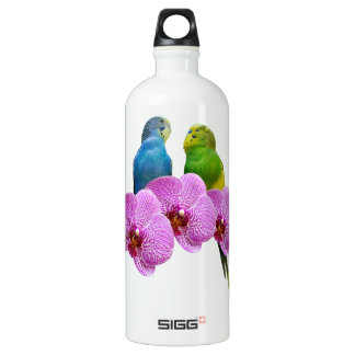 Budgie with Purple Orchid Water Bottle