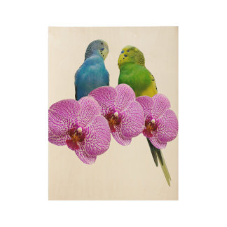 Budgie with Purple Orchid Wood Poster