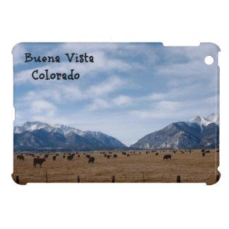 Buena Vista, CO Case For The iPad Mini