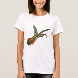Buff-tailed Sicklebill T-Shirt