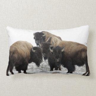 Buffalo Bison Decorative Throw Pillow