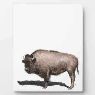 Buffalo, Bubalus Plaque