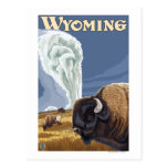 Buffalo by Old Faithful Vintage Travel Poster Post Card