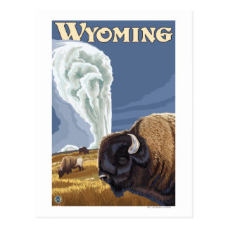 Buffalo by Old Faithful Vintage Travel Poster Postcard