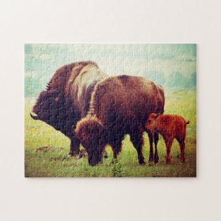 Buffalo & Calf  Oklahoma. Jigsaw Puzzle