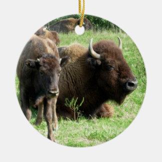 Buffalo can Calf Ornament