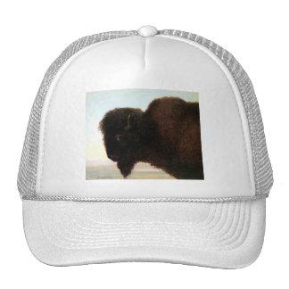 Buffalo Head art Albert Bierstadt bison painting Trucker Hat