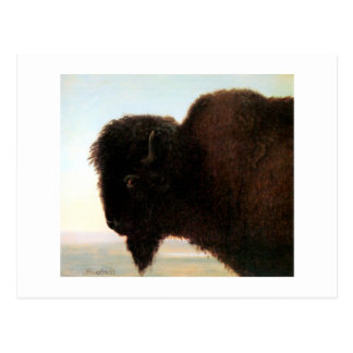 Buffalo Head art Albert Bierstadt bison painting Postcard