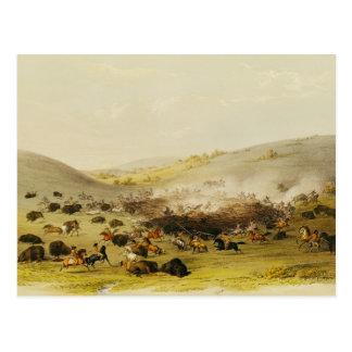 Buffalo Hunt, Surround, c.1832 Postcard