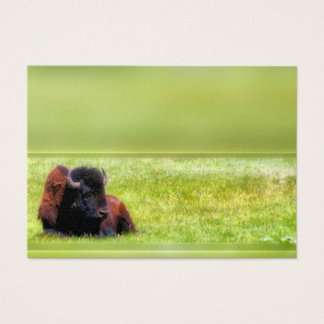Buffalo Meadow Business Card