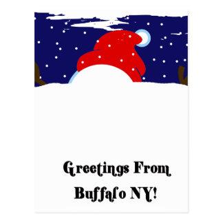Buffalo NY Snowman Postcard
