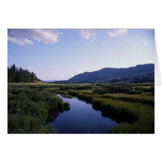 Buffalo River, North Fork Wy. Card