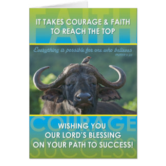 Buffalo Success Card
