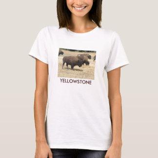 Buffalo Yellowstone T-Shirt
