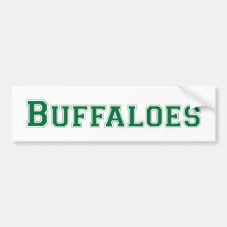 Buffaloes square logo in green bumper sticker