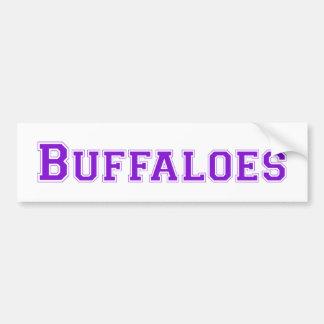 Buffaloes square logo in purple bumper sticker