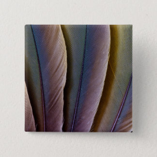 Buffon'S Macaw Feather Design 15 Cm Square Badge