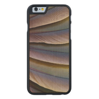 Buffon'S Macaw Feather Design Carved Maple iPhone 6 Case