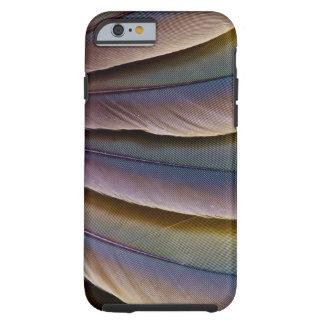 Buffon'S Macaw Feather Design Tough iPhone 6 Case