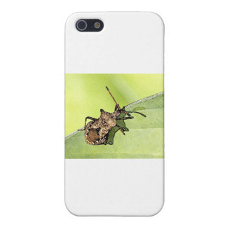 Bug Cover For iPhone 5